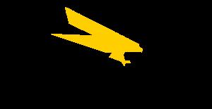 Logo de Agnico Eagle México