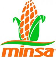 Logo de Grupo Minsa