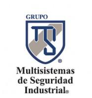 Logo de Grupo Multisistemas de Seguridad Industrial