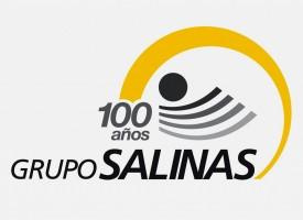 Logo de Grupo Salinas