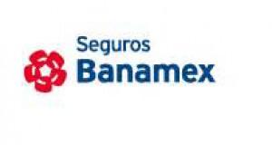 Logo de Seguros Banamex