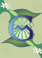 Logo de Aceites Esenciales