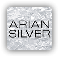 Logo de Arian Silver de Mexico