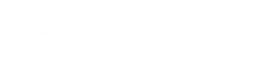 Logo de México Proyectos y Desarrollo